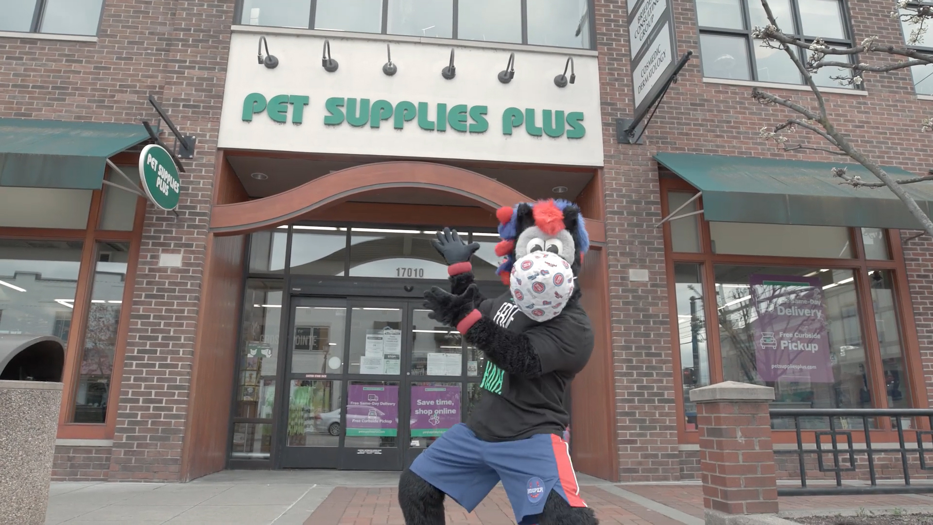Hooper for Hire: Pet Supplies Plus